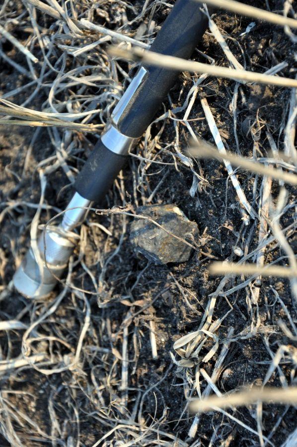 18.85 g meteorite in situ