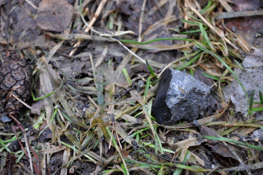 32.6 g stone in situ