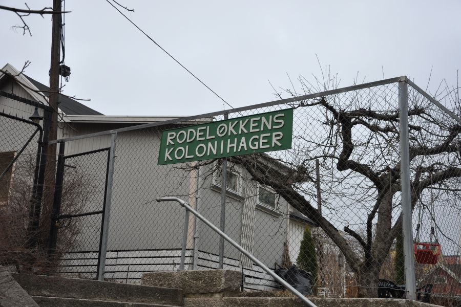Rodeløkkens Kolonihager – area where meteorites hit in the summer houses