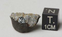Pultusk H5 5.75 g