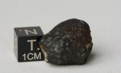Pultusk H5 5.98 g